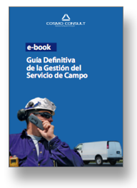 Descargar-ebook-field-services